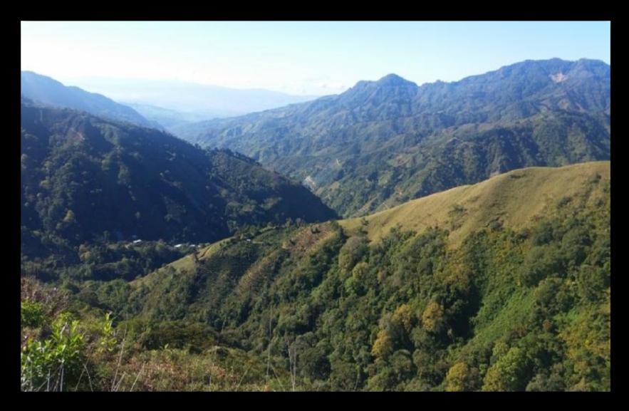哥斯大黎加 奇里坡 拉瓦卡莊園.