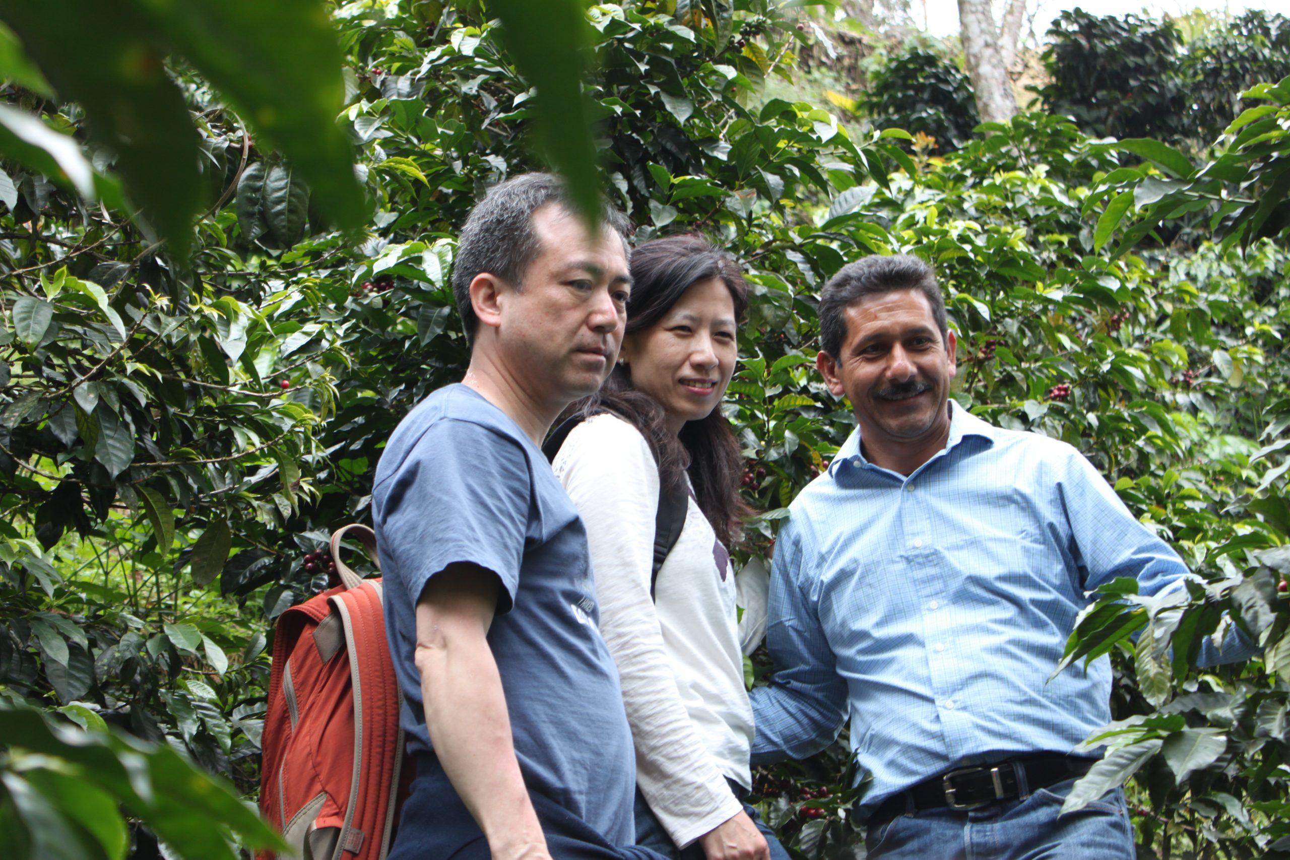 瓜地馬拉 希望莊園