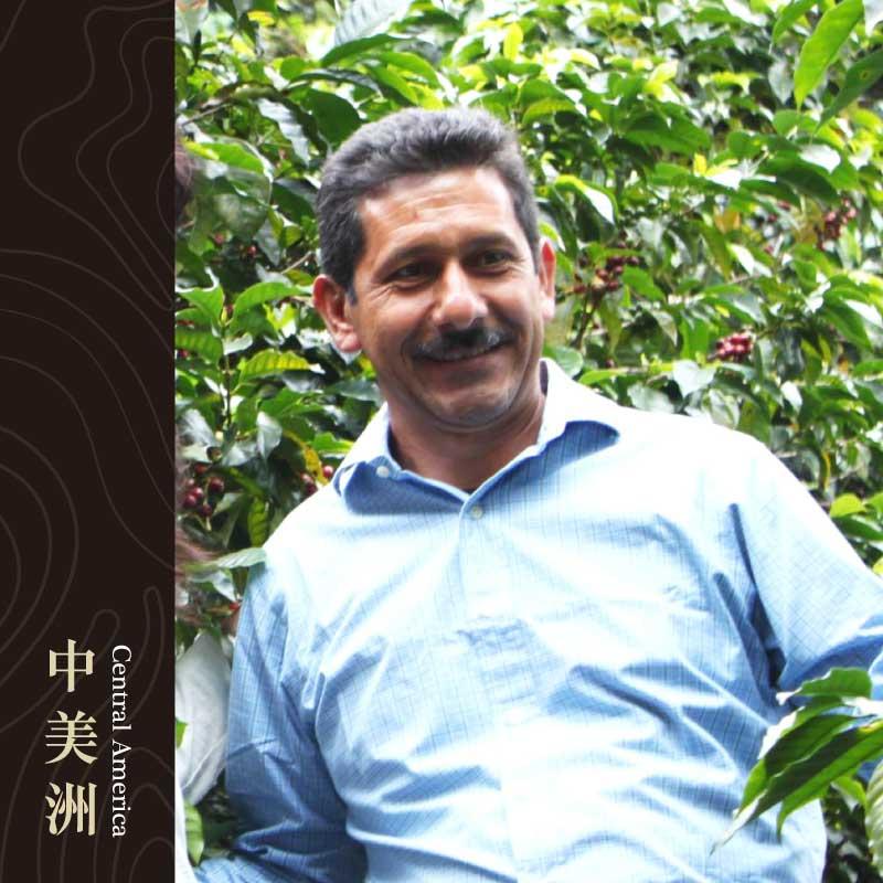 瓜地馬拉 薇薇特南果 希望莊園