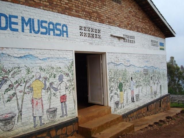 盧安達 穆莎莎合作社1
