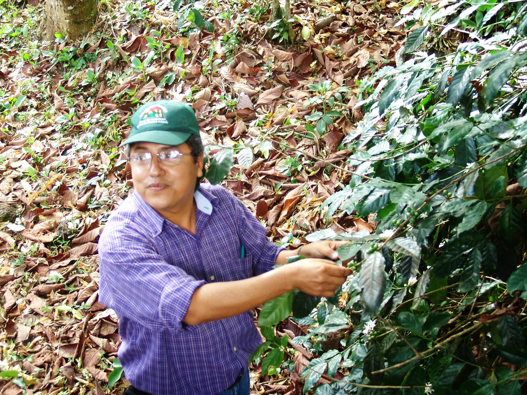 加拉巴哥咖啡水洗01