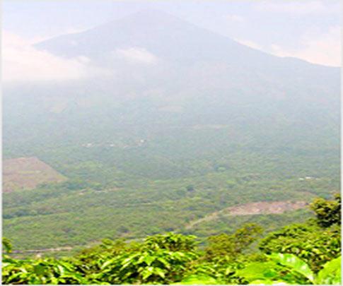 瓜地馬拉 阿蒂特蘭產區 阿吉蒲莊園 02