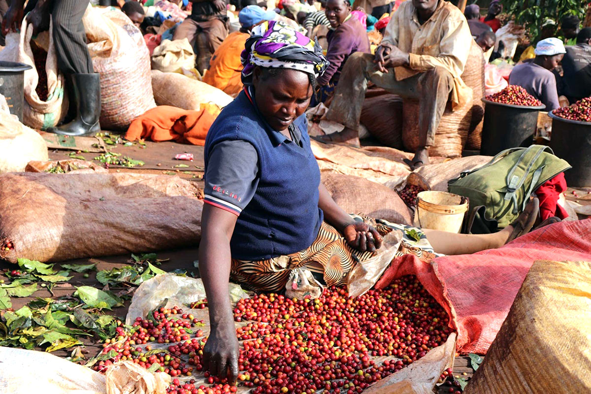 Oaklands Estate