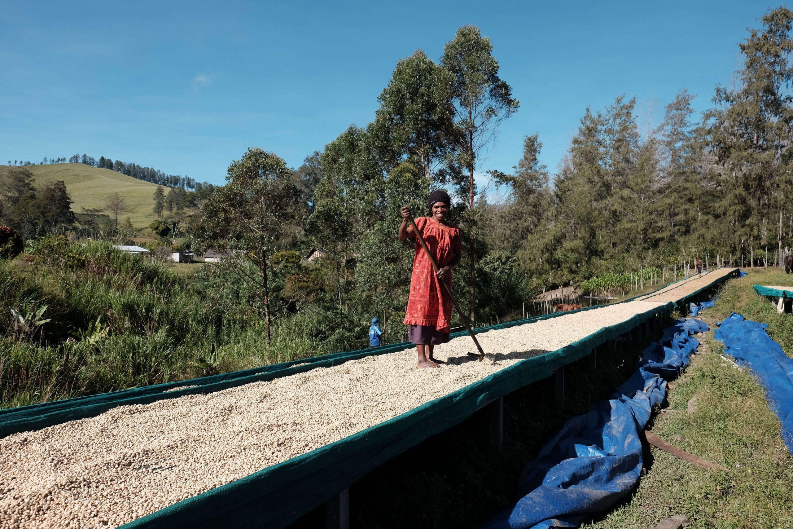 Png Tairora Drying 1