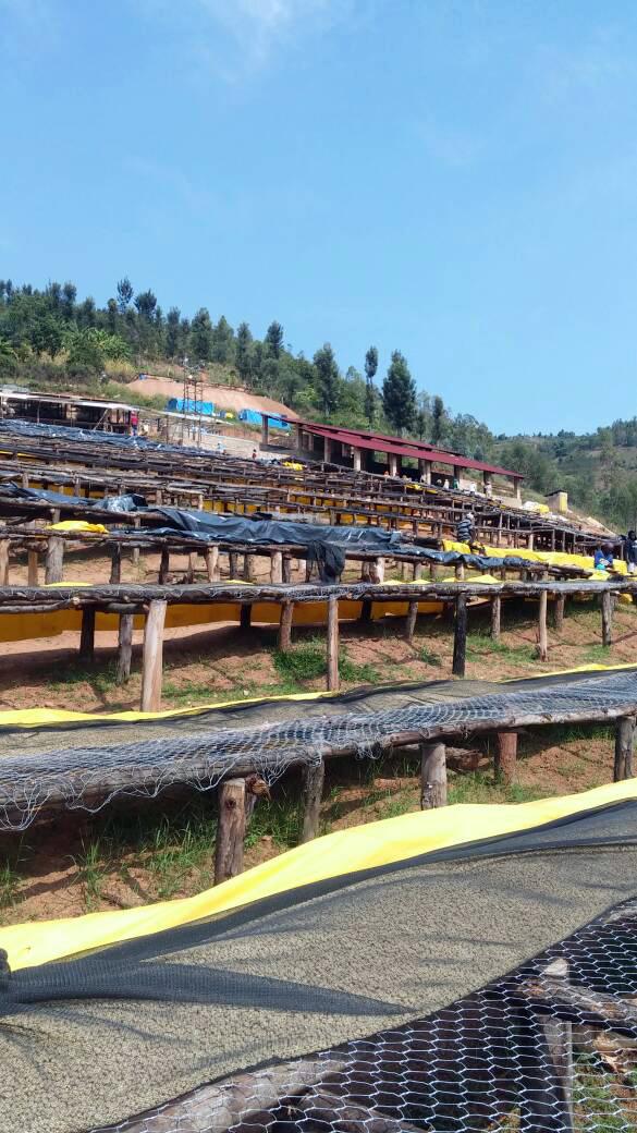 Rwanda Buf Umurage 3